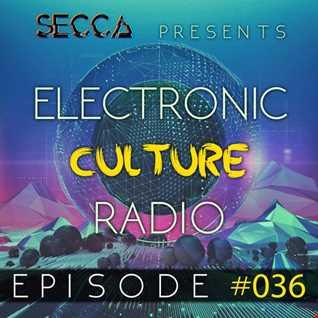 Secca Presents: Electronic Culture Radio #036