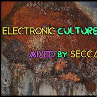Electronic Culture Vol. 3