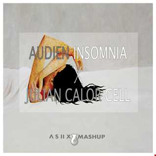 Audien vs. Julian Calor - Insomnia X Cell (A S II X Mashup)