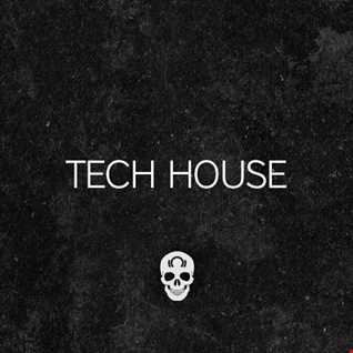 dj TASK presents TECH HOUSE MAYHEM vol.2