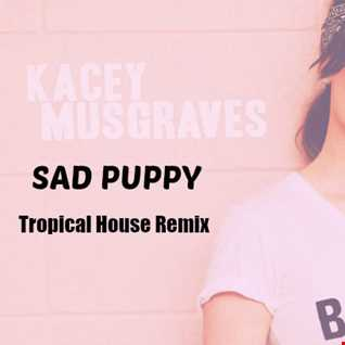 Kacey Musgraves - Biscuits (Sad Puppy Tropical House Remix)