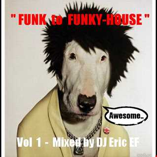 FUNK to FUNKY HOUSE - 1