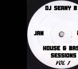 DJ Seany B House & bass Sessions Vol 1 2017 mix mp3