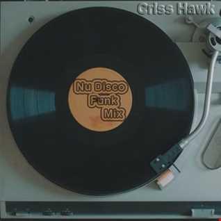 Criss Hawk    Nu disco and Funk Mix