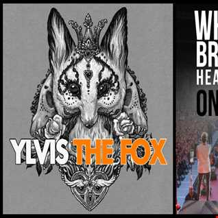 Where Do Broken Foxes Go - Ylvis: What Does The Fox Say vs. One Direction: Where Do Broken Hearts Go