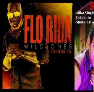 Wild Hone Na De - Flo Rida ft. Sia: Wild Ones vs. Mika Singh ft. Bohemia & Shefali Alvares: Subha Hone Na De