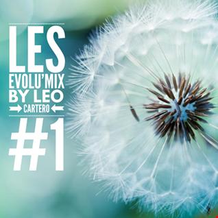 Leo Cartero   Evolumix 1