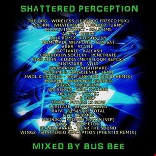 Shattered Perception