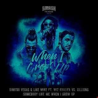 Dimitri Vegas & Like Mike ft. Wiz Khalifa vs. Xillions - Somebody Like Me When I Grow Up (Mellody Mashup)