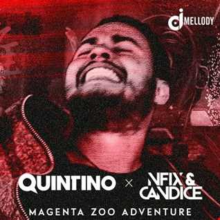 Quintino vs. Nfix & Candice vs. DJ Snake - Magenta Zoo Adventure (Mellody Mashup)