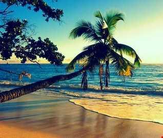 deep summer vibes