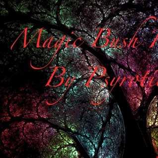 Psyrotica   Magic Bush Rooms