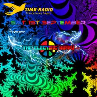 Wormhole Trip by the Electric Hippy - TIMB Radio Sept 1st 2018