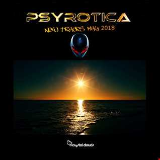 The Global revolution EP By Psyrotica  -  May 17th 2018