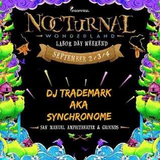 "DJ Trademark aka Synchronome Live @ Nocturnal Wonderland 2016 ""Boombox"""