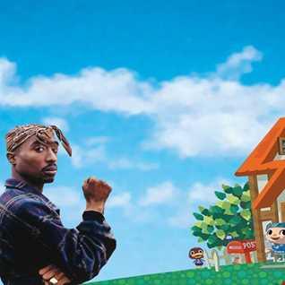 Hold on till 7 A.M - Tupac vs Animal Crossing