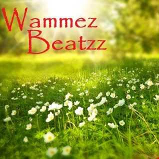 Wammez Beatzz The Bass Place nr 02