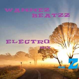 Wammez Beatzz Electro mix volume 24