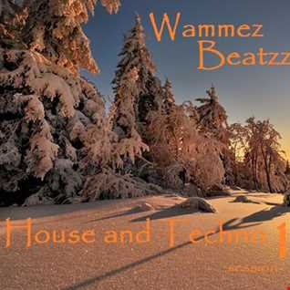 Wammez Beatzz House and Techno session 19