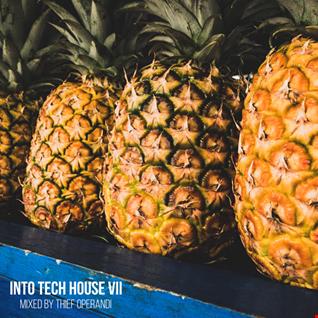Ino Tech House VII