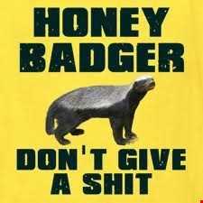 Pumped Up Kicks (The Honey Badger Mega Mix)