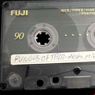 FUNGUS of TALA-Mestic Mix ...by Mr.Vain (Rare Tape - Side B)