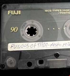 FUNGUS of TALA-Mestic Mix ...by Mr.Vain (Rare Tape - Side A)