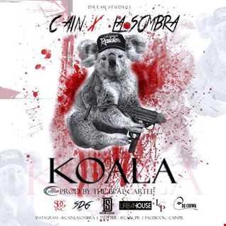 Cain La Sombra - Koala
