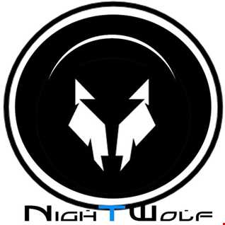 Vacant Mind : Night Wolf