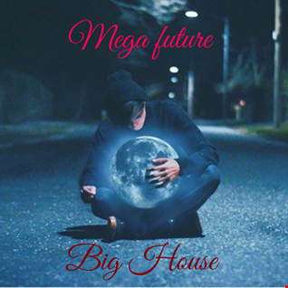 Mega Future Big House #1