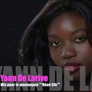 """Yann De Larive mix un set DeepFunk  """""""" Néné Clb """""""""""