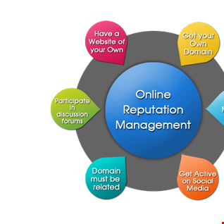 Online Reputation Management Services India - Vipra Business