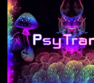 DJ RYDHM DEE - PSYTRANCE MIX 2017
