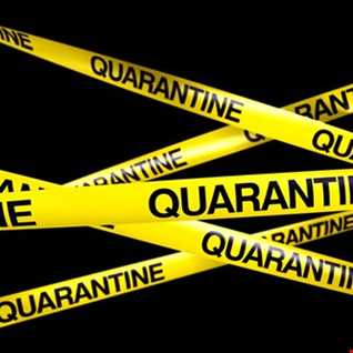 Johannes Anton @ Quarantine Covid 19 Session