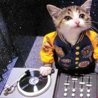 DJ Hollywood CO - Fugees - Ready Or HOT NIGGA - Remix