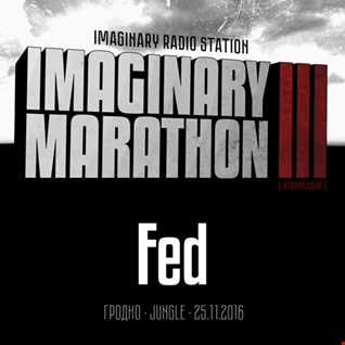 2016.11.25   Imaginary Marathon III . Day5. Fed Live At 87bpm.com