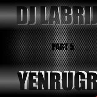 Dj Labrijn - YenruGro P5
