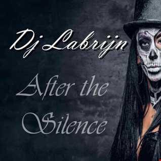 Dj Labrijn - After the Silence