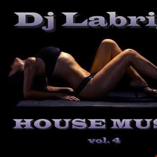 Dj Labrijn - House music vol 4
