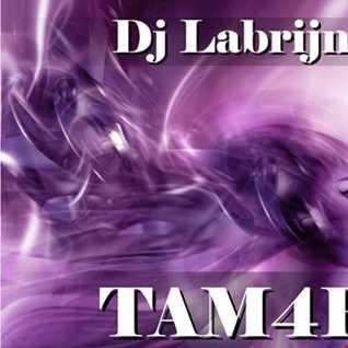 Dj Labrijn - TAM4R
