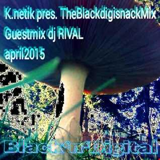 K.netik pres. TheBlackdigisnack Guestmix - dj RIVAL - april 2015