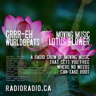 Moving Music _ Wurldbeats _ Lotus Flower