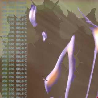 Techno Progressivetek - The Capharnaum