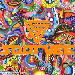 S Dot Vee - We Like To Groove - Vol 1