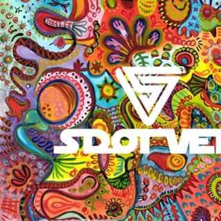 S Dot Vee - We Like To Groove - Vol 2