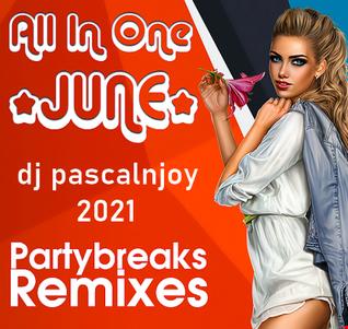 dj pascalnjoy vol 25 party break 2021