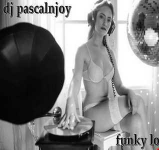 dj pascalnjoy funky love 2017