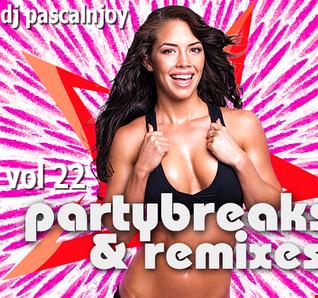 dj pascalnjoy vol 22 party break 2020