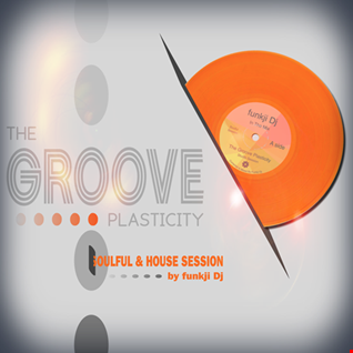 THE GROOVE PLASTICITY