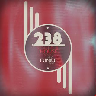 N. 238 ❖ Soulful House